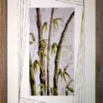 encadrement-isabelle-vincent-fleurs (8)